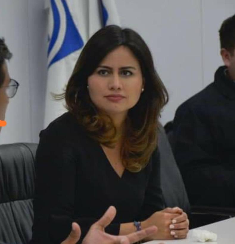 Propondrá senadora que seguro de desempleo sea ley en Veracruz