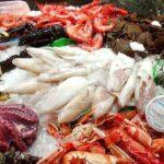 Cae 70% consumo de pescados y mariscos en el puerto de Veracruz