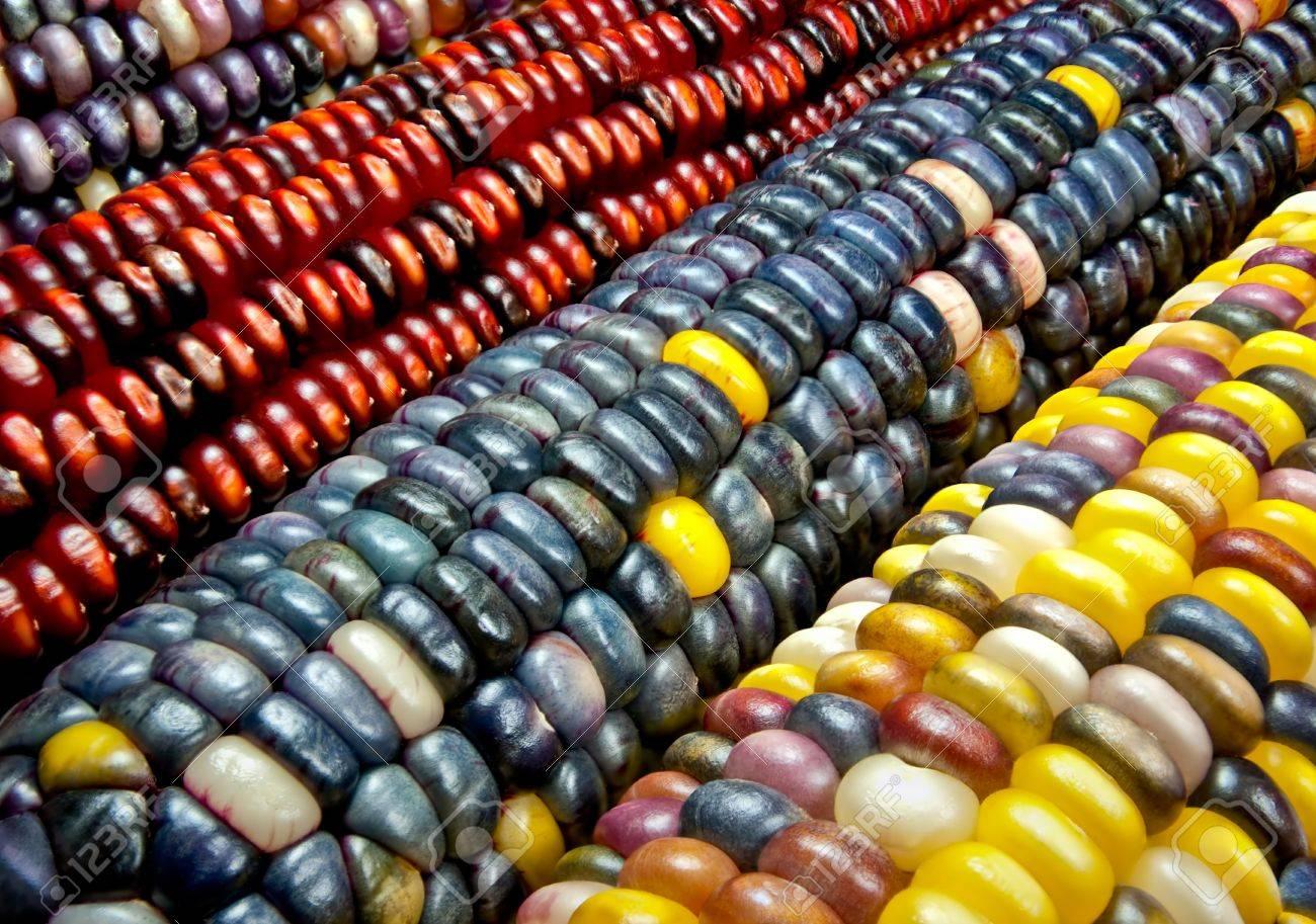 Mujeres preservan la gastronomía maya del maíz y de su colorido