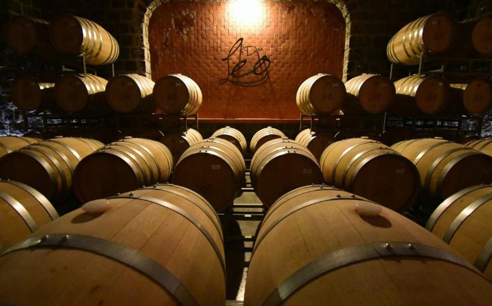 Coahuila tiene el mejor cabernet sauvignon del mundo