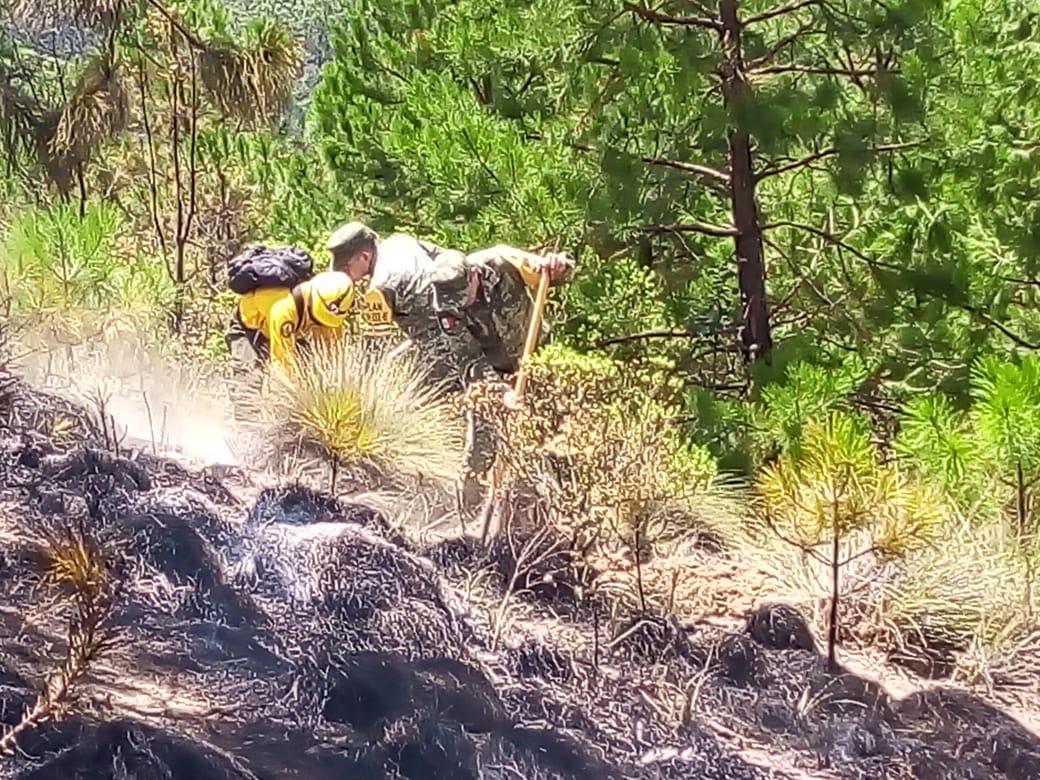 Aplica Sedena Plan DN-III-E por incendio en comunidad de Perote