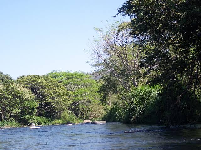 Comunidades de ríos Papaloapan y Tesechoacán deben estar alertas: PC