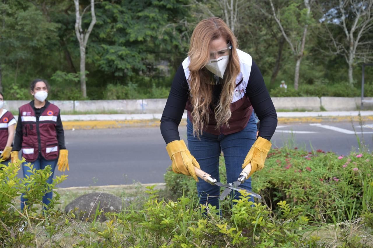 DIF Estatal adopta área verde y jardineras de glorieta Cinco Cerros