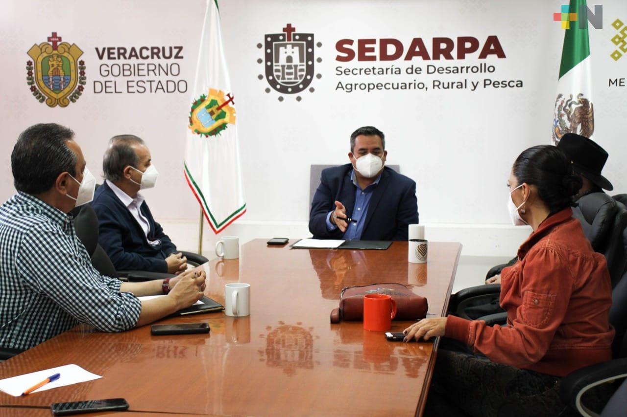 Plantea SEDARPA esquema de financiamiento para capitalizar al sector cafetalero
