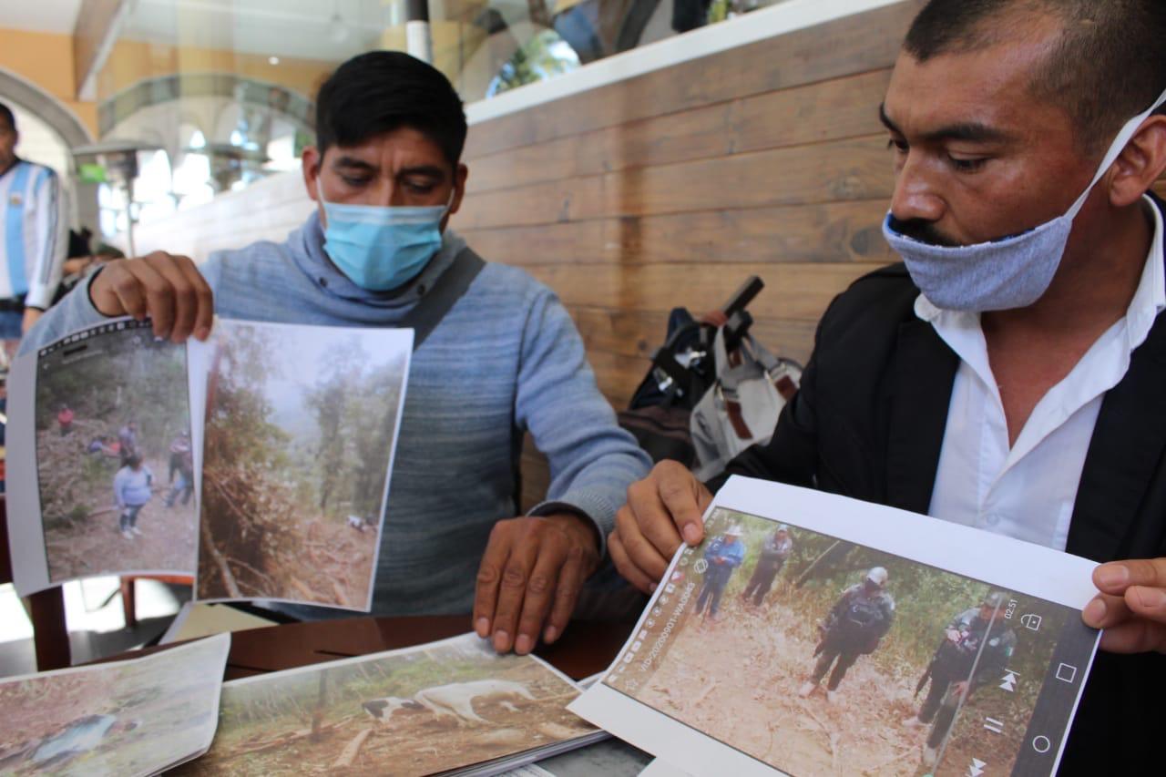 Denuncia tala clandestina en Acajete; Profepa se hace ojo de hormiga