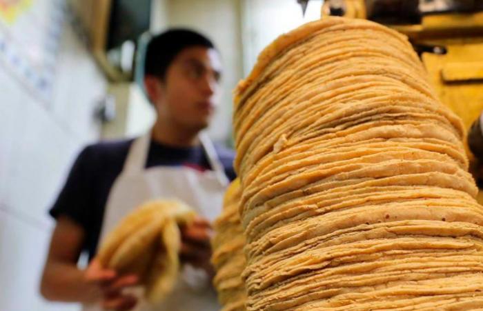Tortilla podría llegar hasta los 21 pesos en área conurbada de Veracruz-Boca