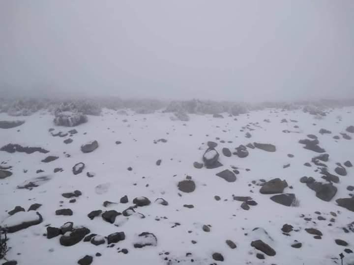 Se registra la segunda nevada del año en el Cofre de Perote