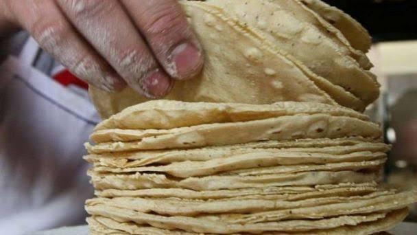 Aumentará el precio de la tortilla en Veracruz