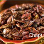 Alimentos prehispánicos que siguen en la cocina mexicana