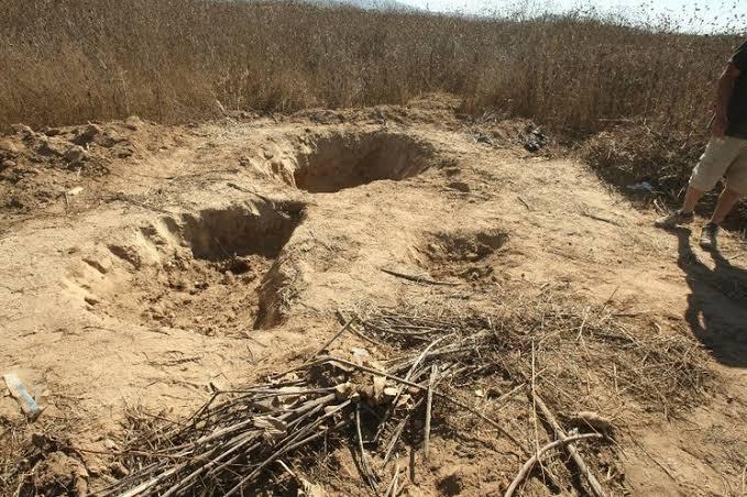 Encuentran nueva fosa en Alvarado.