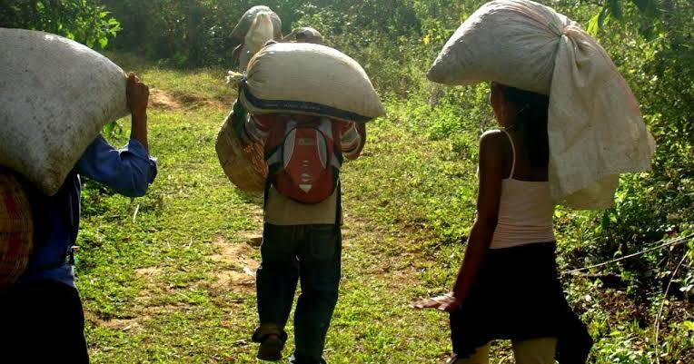 Sigue la migración de los campesinos en México.