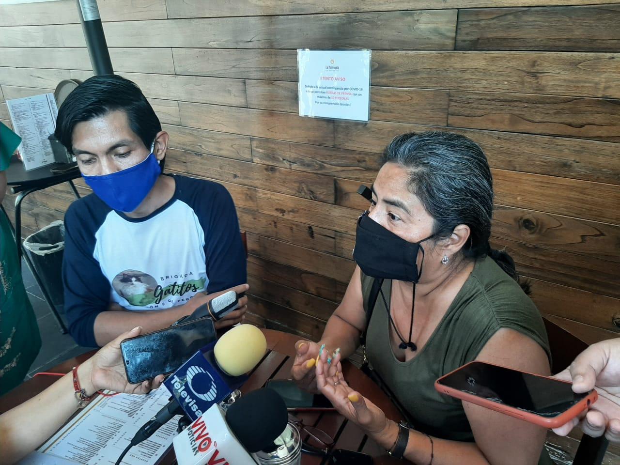 Alerta brigada Gatitos Panteón 5 de febrero que otro grupo pide apoyos a su nombre