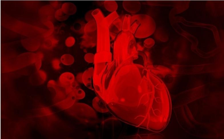 Miocarditis podría estar relacionada con la vacuna Pfizer