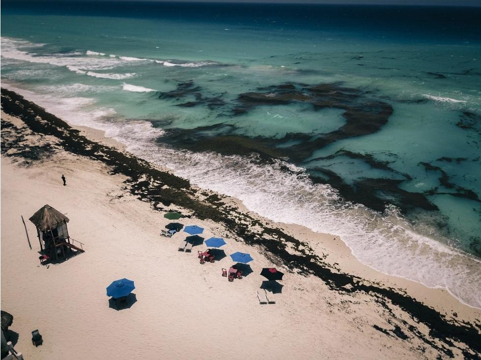 El sargazo ensombrece la recuperación del turismo en el Caribe mexicano
