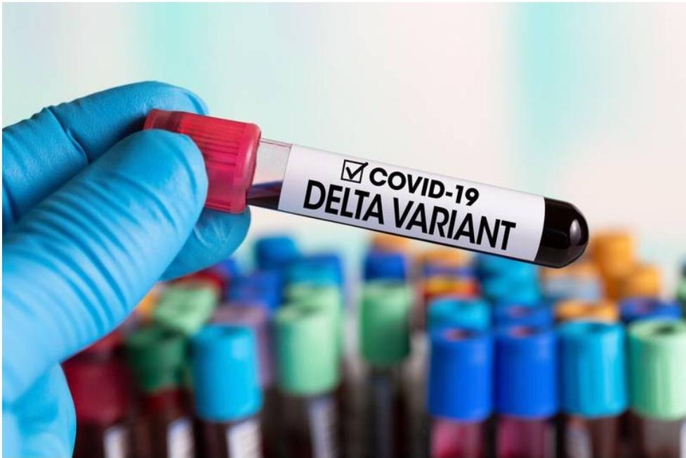 Variante de Covid Delta, será predominante en México
